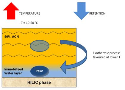 HILIC Solutions #7: Column temperature in HILIC-1