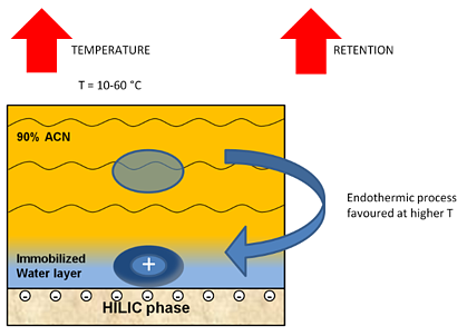 HILIC Solutions #7: Column temperature in HILIC-2